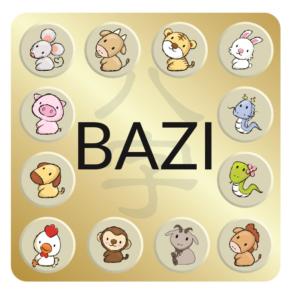 Bazi Profile - Basis of PATHS - PATHS - Mobile App